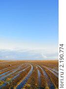 Купить «Бездорожье», фото № 2190774, снято 2 октября 2010 г. (c) макаров виктор / Фотобанк Лори