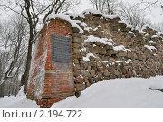 Купить «У развалин Гдовской крепости», фото № 2194722, снято 5 декабря 2010 г. (c) Виктор Карасев / Фотобанк Лори