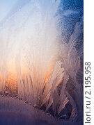 Купить «Зимняя фантазия, морозный  узор на стекле», фото № 2195958, снято 20 февраля 2010 г. (c) ElenArt / Фотобанк Лори