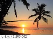 Купить «Закат на тропическом пляже», фото № 2203062, снято 22 января 2010 г. (c) Валерий Шанин / Фотобанк Лори