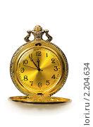Купить «Старинные  карманные  часы», фото № 2204634, снято 9 декабря 2010 г. (c) Юлия  Лесина / Фотобанк Лори