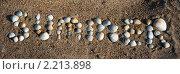 Купить «Надпись summer из ракушек на песке», фото № 2213898, снято 22 октября 2018 г. (c) SummeRain / Фотобанк Лори