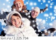 Купить «Веселая компания друзей зимой», фото № 2225734, снято 16 января 2010 г. (c) Andrejs Pidjass / Фотобанк Лори