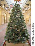 Купить «Рождественская ель в ГУМе, Москва», эксклюзивное фото № 2228582, снято 17 декабря 2010 г. (c) Валерия Попова / Фотобанк Лори