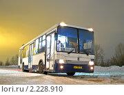 Купить «Автобус», фото № 2228910, снято 17 декабря 2010 г. (c) Art Konovalov / Фотобанк Лори