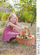 Купить «Девочка с яблоками», фото № 2228990, снято 11 августа 2010 г. (c) Майя Крученкова / Фотобанк Лори