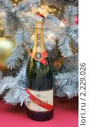 Купить «Подарок к Новому году. Шампанское  Мумм Кордон Руж (Mumm Cordon Rouge)», фото № 2229026, снято 17 декабря 2010 г. (c) Валерия Попова / Фотобанк Лори