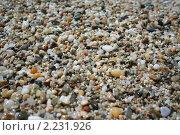 Морские камушки. Стоковое фото, фотограф Екатерина Рыбникова / Фотобанк Лори