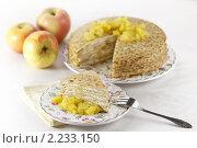 Купить «Блинный слоеный пирог с яблоком припущенным и творогом», эксклюзивное фото № 2233150, снято 17 декабря 2010 г. (c) Лисовская Наталья / Фотобанк Лори
