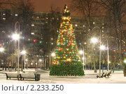 Купить «Новогодняя елка в маленьком сквере», фото № 2233250, снято 17 декабря 2010 г. (c) Наталия Шевченко / Фотобанк Лори