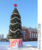 Купить «Городская елка», фото № 2235558, снято 19 февраля 2019 г. (c) Володина Ольга / Фотобанк Лори