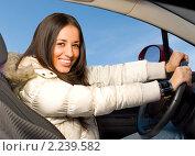 Купить «Красивая брюнетка за рулем автомобиля», фото № 2239582, снято 11 февраля 2009 г. (c) Сергей Петерман / Фотобанк Лори