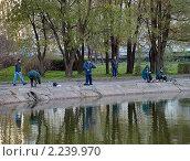 Купить «Рыбаки на берегу городского пруда», фото № 2239970, снято 24 октября 2010 г. (c) Самойлова Екатерина / Фотобанк Лори