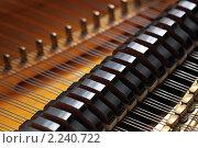 Купить «Струны рояля», фото № 2240722, снято 22 декабря 2010 г. (c) Игорь Долгов / Фотобанк Лори