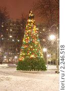 Купить «Новогодняя елка в маленьком сквере», фото № 2246518, снято 17 декабря 2010 г. (c) Наталия Шевченко / Фотобанк Лори