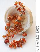 Купить «Бусы из сердолика», эксклюзивное фото № 2248670, снято 22 декабря 2010 г. (c) Короленко Елена / Фотобанк Лори