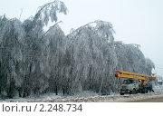 Купить «Ликвидация обрыва проводов в Подмосковье», фото № 2248734, снято 27 декабря 2010 г. (c) Борис Двойников / Фотобанк Лори