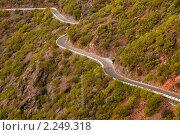 Купить «Горная дорога на Тенерифе, Канарские острова», фото № 2249318, снято 11 декабря 2009 г. (c) Алексей Зарубин / Фотобанк Лори