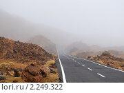 Купить «Горная дорога, Тенерифе», фото № 2249322, снято 12 декабря 2009 г. (c) Алексей Зарубин / Фотобанк Лори