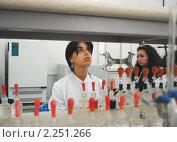 Купить «Студентка проводит измерения в химическом практикуме», эксклюзивное фото № 2251266, снято 15 сентября 2010 г. (c) Татьяна Юни / Фотобанк Лори