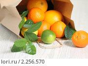 Купить «Свежие цитрусовые в пакете», фото № 2256570, снято 31 декабря 2010 г. (c) Дарья Петренко / Фотобанк Лори