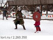 Купить «Рыцарский турнир в Туле», эксклюзивное фото № 2260350, снято 5 января 2011 г. (c) ФЕДЛОГ / Фотобанк Лори