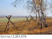 Купить «Опушка леса. Огороженное пастбище», эксклюзивное фото № 2261674, снято 1 октября 2007 г. (c) Александр Щепин / Фотобанк Лори