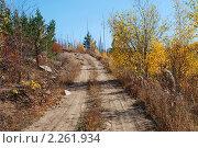 Купить «Лесная дорога. Забайкальский край», эксклюзивное фото № 2261934, снято 29 сентября 2007 г. (c) Александр Щепин / Фотобанк Лори
