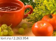 Купить «Травяной чай», фото № 2263954, снято 28 июня 2007 г. (c) Наталия Кленова / Фотобанк Лори