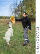 Купить «Молодой человек кормит листьями клена белого козленка», фото № 2267122, снято 2 октября 2010 г. (c) Василий Вишневский / Фотобанк Лори