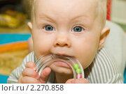 Купить «Младенец грызет погремушку», фото № 2270858, снято 28 октября 2010 г. (c) Владимир Сидорович / Фотобанк Лори