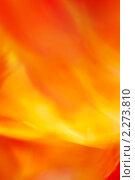 Жар. Стоковая иллюстрация, иллюстратор Погорелов Владимир / Фотобанк Лори