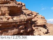 Купить «Цветной каньон. Синай. Египет», фото № 2275366, снято 8 января 2011 г. (c) Екатерина Овсянникова / Фотобанк Лори