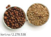 Купить «Семена укропа и перца на белом фоне», фото № 2278538, снято 15 января 2011 г. (c) Екатерина Рыбина / Фотобанк Лори