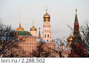 Купить «Москва. Вид на Кремль храмы кремля», эксклюзивное фото № 2288502, снято 16 января 2011 г. (c) lana1501 / Фотобанк Лори