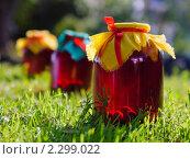Купить «Банки с вишневым компотом», фото № 2299022, снято 13 октября 2010 г. (c) Леухина Елена / Фотобанк Лори