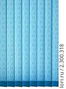 Купить «Текстура, вертикальные жалюзи, синий цвет», фото № 2300318, снято 20 сентября 2007 г. (c) Сахно Роман Викторович / Фотобанк Лори