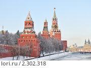 Купить «Башни Московского Кремля зимой», фото № 2302318, снято 4 января 2011 г. (c) Денис Ларкин / Фотобанк Лори