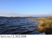 Ветер на озере. Стоковое фото, фотограф Дмитрий Куома / Фотобанк Лори