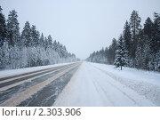 Дорога. Стоковое фото, фотограф Дмитрий Куома / Фотобанк Лори