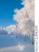 Купить «Зимний городской пейзаж», фото № 2304610, снято 24 января 2011 г. (c) Икан Леонид / Фотобанк Лори