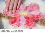 Купить «Мокрое валяние. Смачивание мыльным раствором», эксклюзивное фото № 2305050, снято 9 июля 2010 г. (c) Шичкина Антонина / Фотобанк Лори