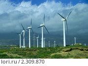 Купить «Энергия ветра», фото № 2309870, снято 16 февраля 2010 г. (c) Мельников Станислав Александрович / Фотобанк Лори