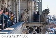 Купить «Туристы на смотровой площадке  собора  Нотр дам де Пари (Notre dame de Paris). Париж. Франция.», фото № 2311306, снято 21 октября 2010 г. (c) Николай Коржов / Фотобанк Лори