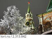 Купить «Ночной вид на  Спасскую башню», фото № 2313842, снято 27 декабря 2010 г. (c) Михаил Ястребов / Фотобанк Лори