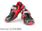 Купить «Спортивная обувь», фото № 2314962, снято 24 декабря 2009 г. (c) Losevsky Pavel / Фотобанк Лори