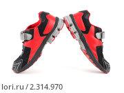 Купить «Спортивная обувь», фото № 2314970, снято 24 декабря 2009 г. (c) Losevsky Pavel / Фотобанк Лори