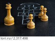 Купить «Шахматные фигуры играют в классики», фото № 2317498, снято 3 февраля 2011 г. (c) Валерий Александрович / Фотобанк Лори