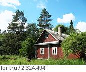 Купить «Деревянный дом в лесу», фото № 2324494, снято 2 июля 2010 г. (c) Заноза-Ру / Фотобанк Лори