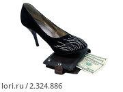 Женская туфля на бумажнике с долларами. Стоковое фото, фотограф Сергей Слабенко / Фотобанк Лори